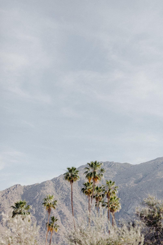 Frederick_Loewe_Estate_Palm_Springs_Wedding_SammBlake_DBW_0031.jpg