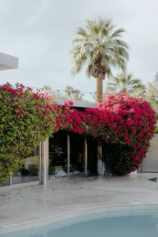 Frederick_Loewe_Estate_Palm_Springs_Wedding_SammBlake_DBW_0034.jpg