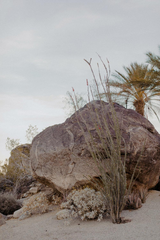 Frederick_Loewe_Estate_Palm_Springs_Wedding_SammBlake_DBW_0072.jpg