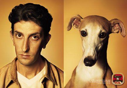 DogsOwner.jpg