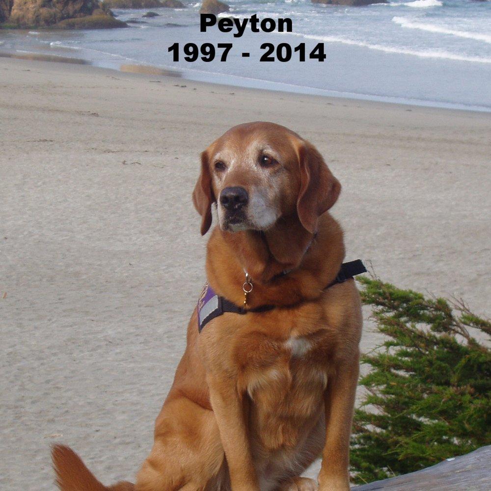 Peyton.JPG