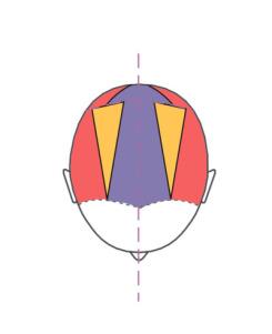 Head 09-6.jpg