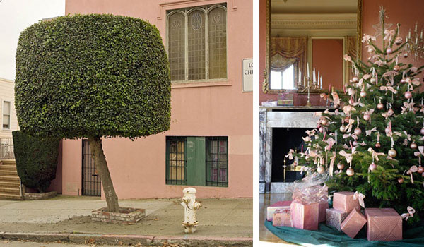 pink-walls.jpg