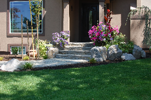 Keep your landscape looking great! See our landscape program here.