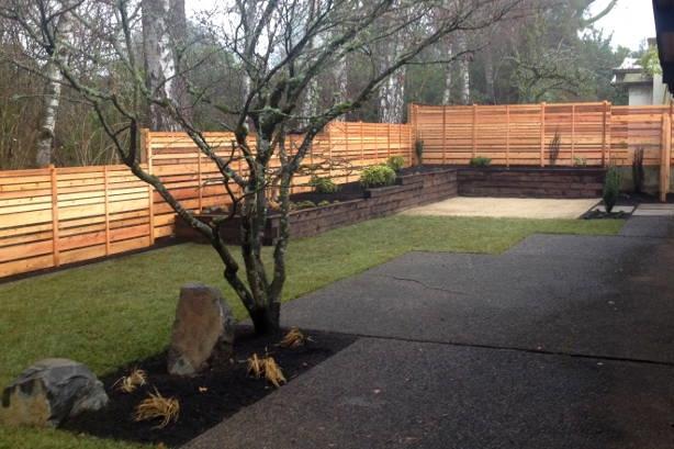 modern backyard rummer home