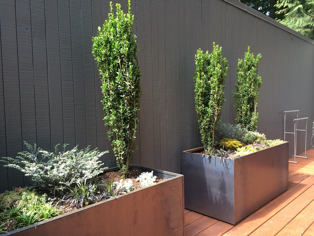 portland-modern-corten-landscaping.JPG