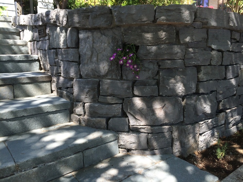 retaining-wall-plant-pocket.JPG