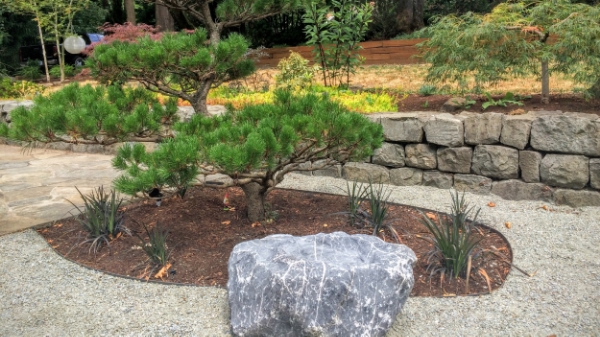 Decomposed Granite in a Japanese Garden