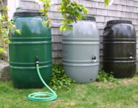 rain barrels hold water for plants