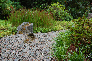 A dry creek can become the new focal point of a beautiful lawn-free landscape.