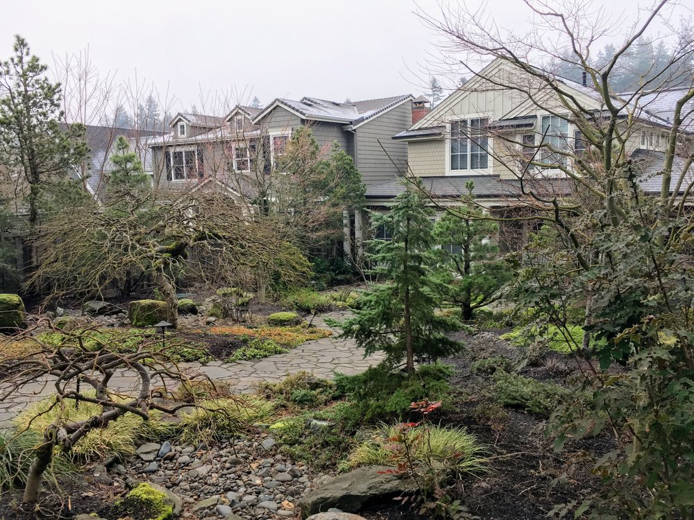 Landscape Timbers Portland Or : Pictures that prove your winter garden can be beautiful