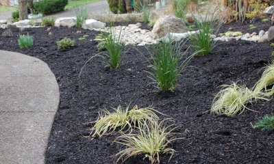 ornamental grasses and bark dust