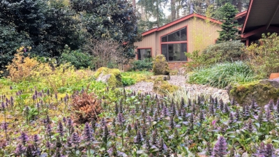 lake oswego landscaping