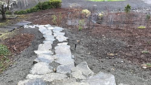 back steps before new landscape