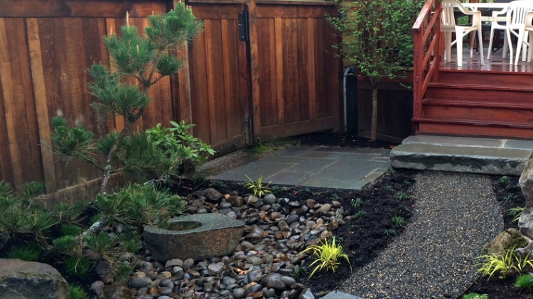 Ross Nw Watergardens On Feedspot Rss Feed