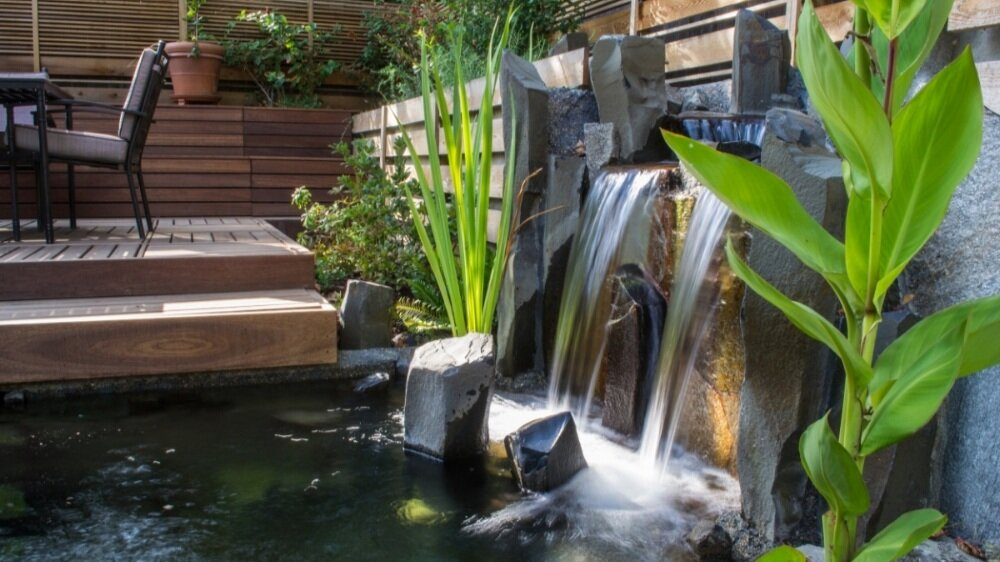 Formal Japanese water feature with koi
