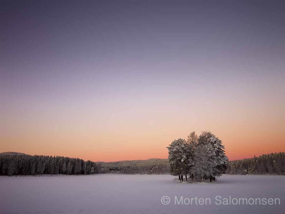 CF000471-MortenSalomonsen_v1.jpg