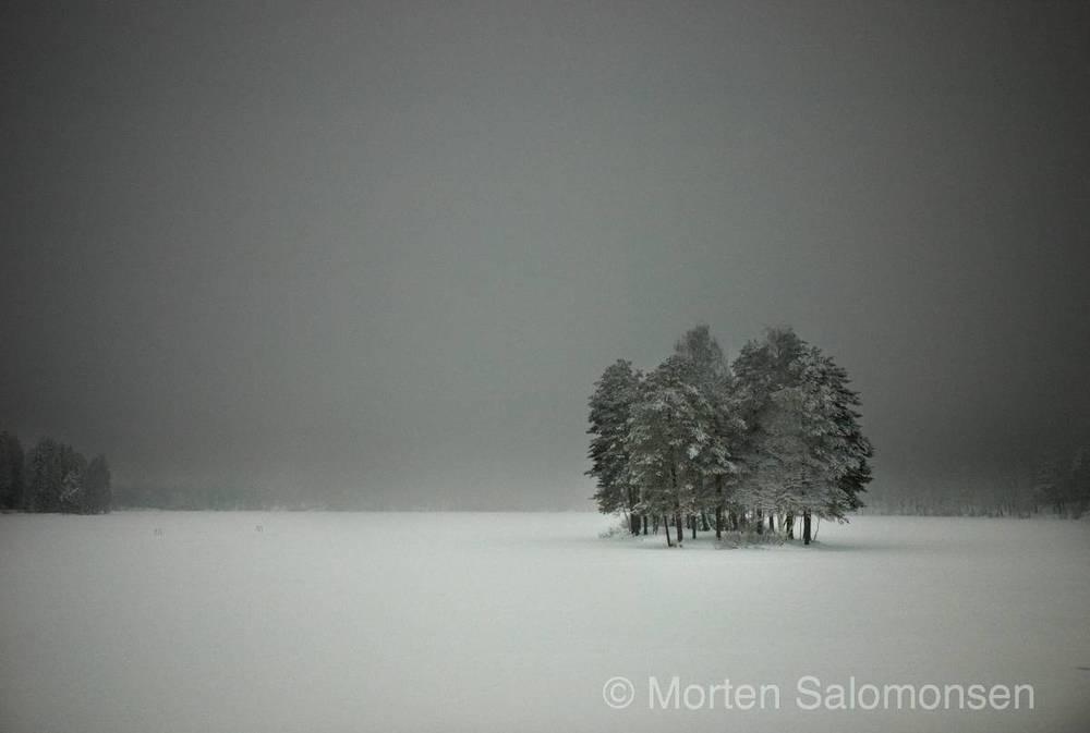 L1004841-MortenSalomonsen_org.jpg