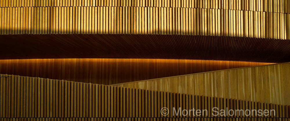 L1005031-MortenSalomonsen.jpg