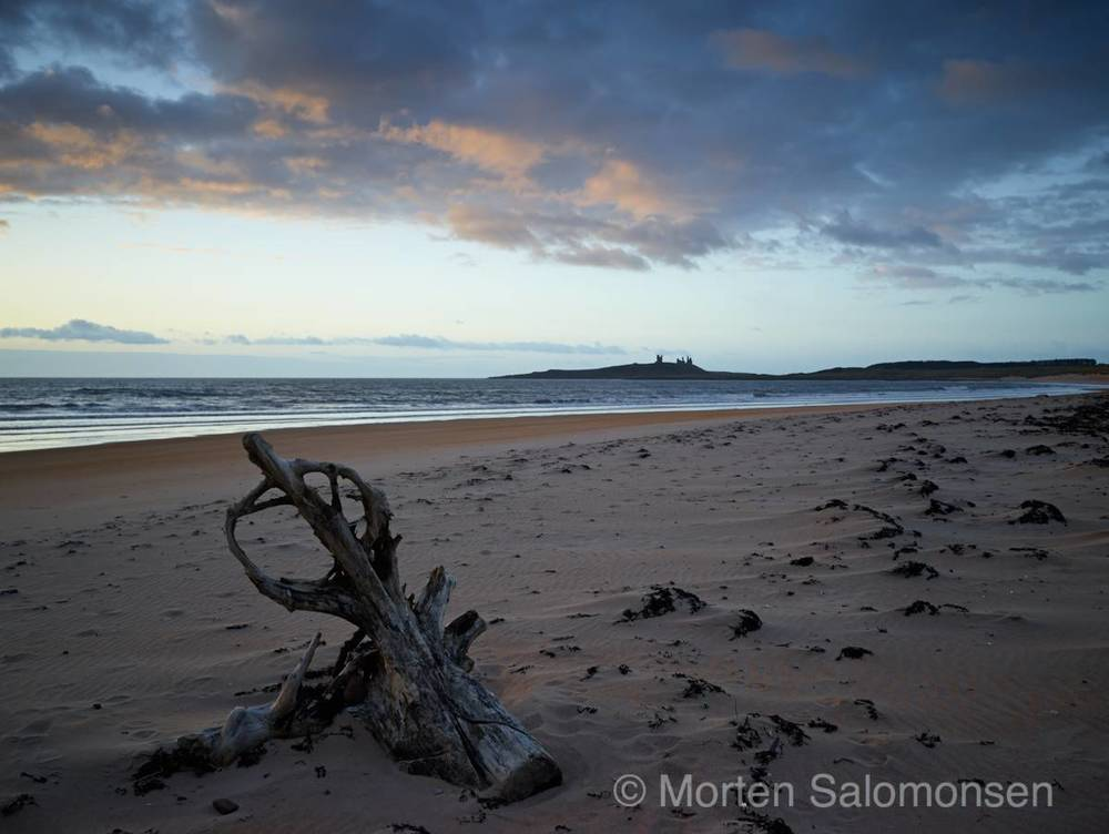 Sunrise Embleton Bay, looking towards Dunstanburgh Castle