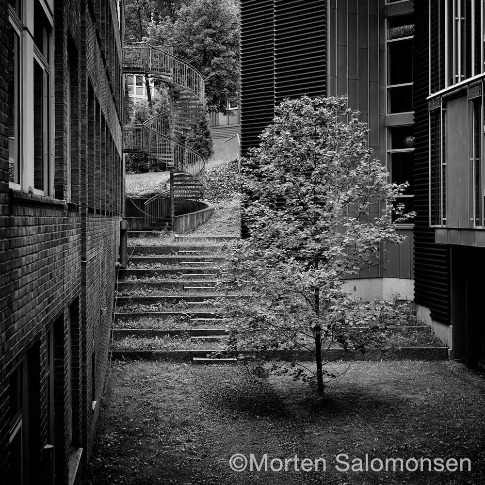 CF000737-30percent-BW-MortenSalomonsen.jpg