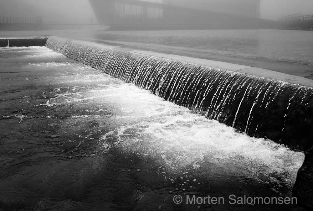 L1005474-MortenSalomonsen_v1.jpg