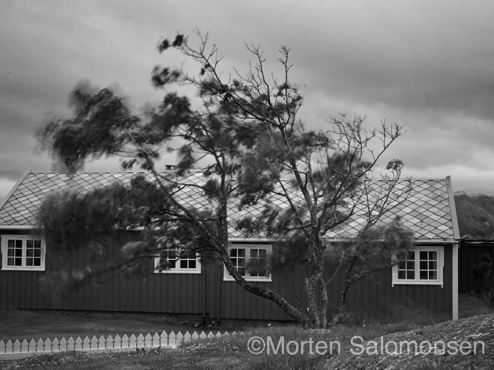 CF000973-MortenSalomonsen.jpg