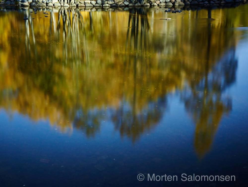 CF001066-MortenSalomonsen.jpg