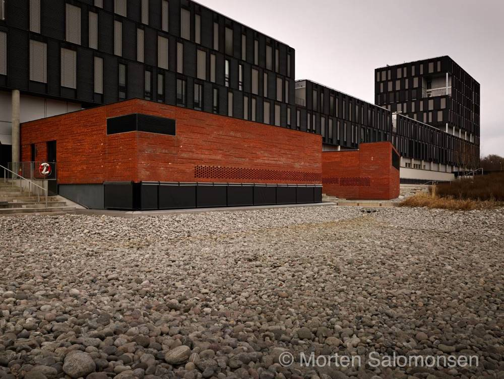 CF000710-MortenSalomonsen_v2.jpg