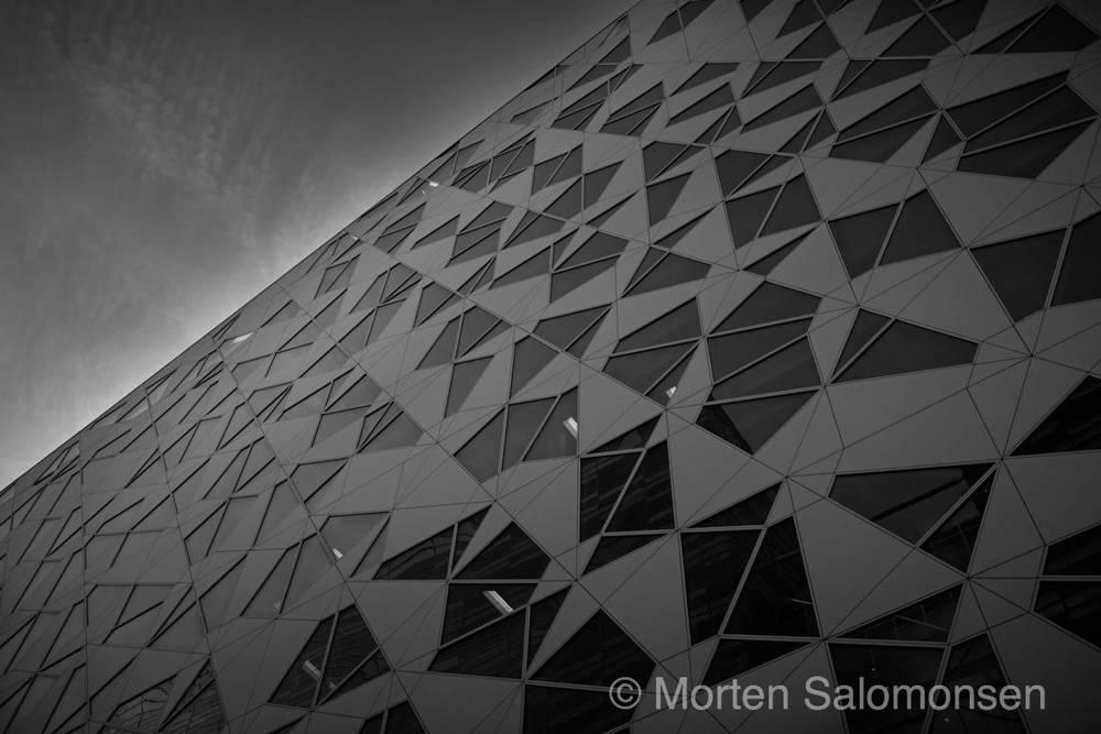 L1005596-MortenSalomonsen.jpg