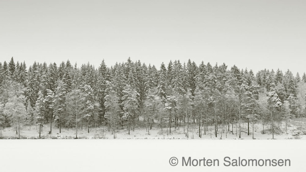 Winter, at last