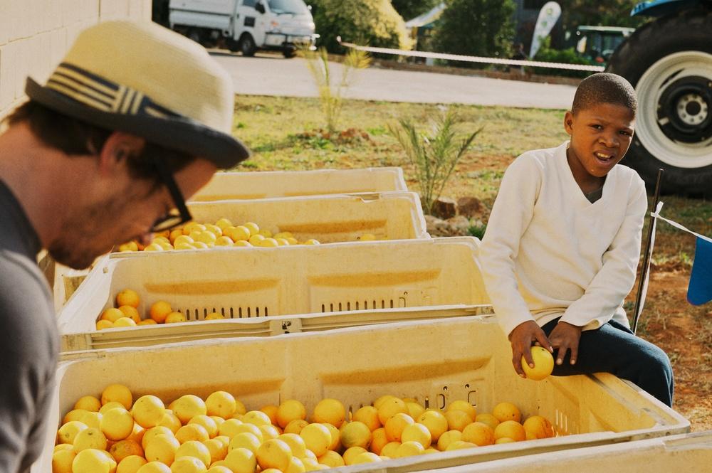 Patensie Citrus Festival