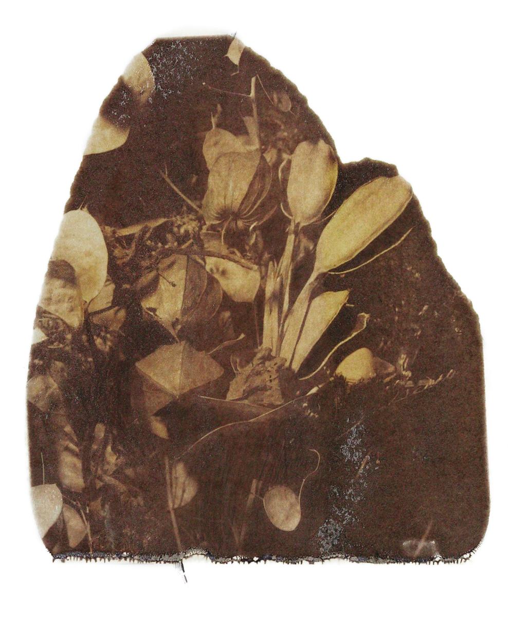GIOLI_POLAROID 2004-17.png