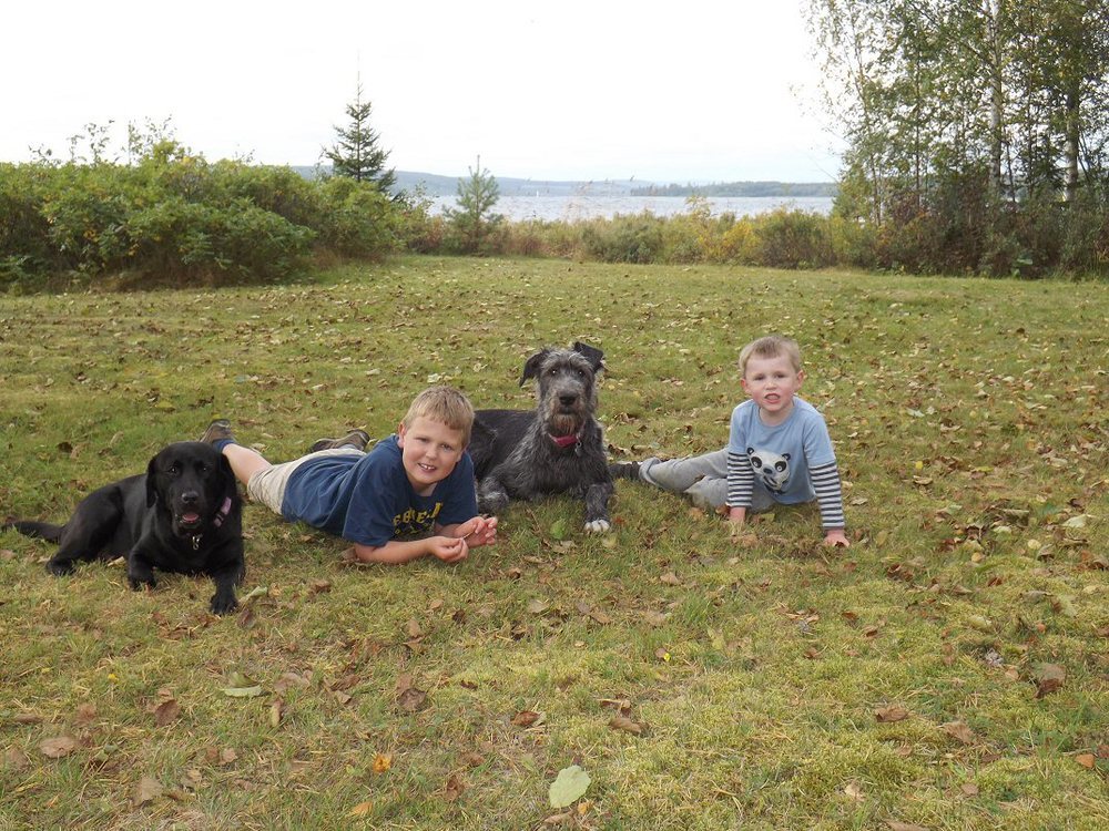 Sam and Ben with Wilma and Daisy in the grass Sept 2013