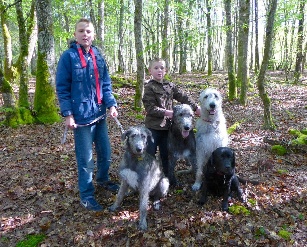 The boys with the Dogs in Meillant Woods 2.jpg