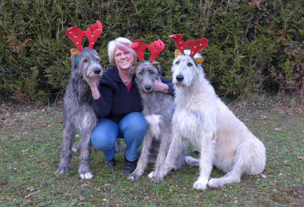 3 Suz & the Wolfie Reindeer.jpg