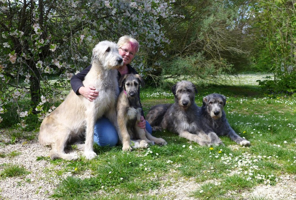 Suz and the Wolfies in the garden2 - April 2017.jpg