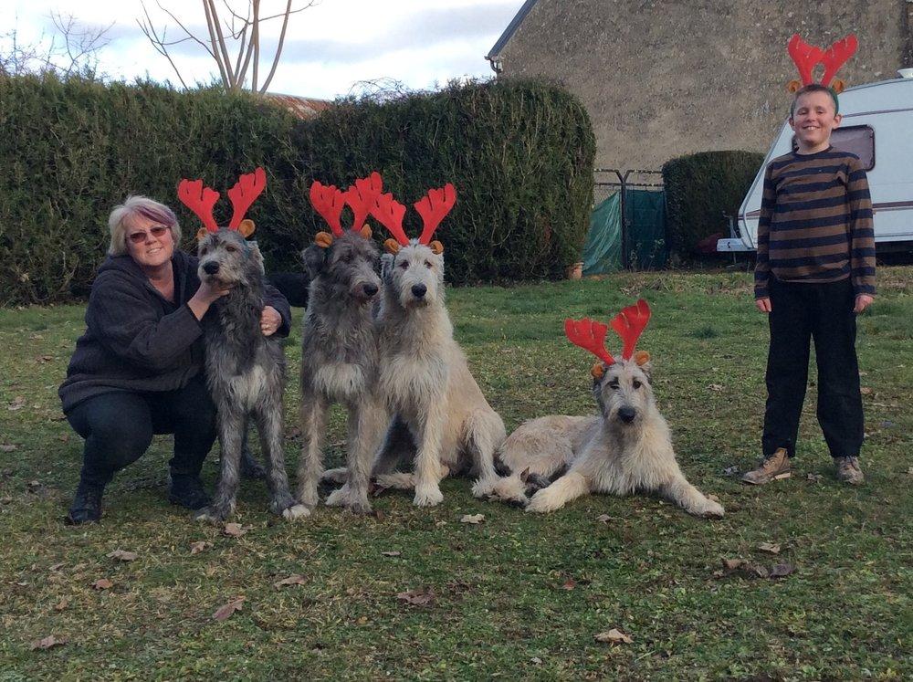 family reindeers.jpg