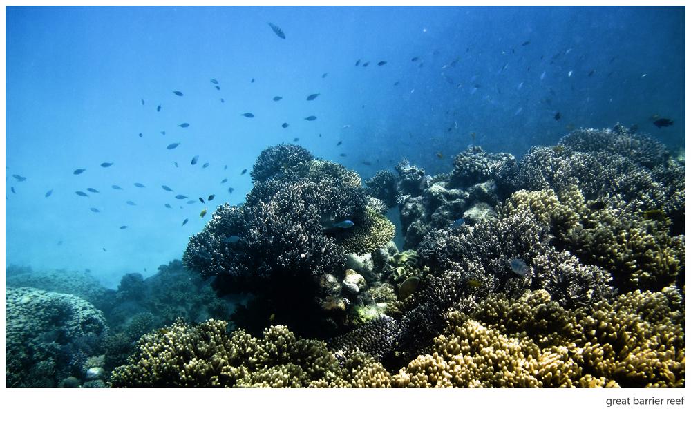 great barrier reef 001.jpg