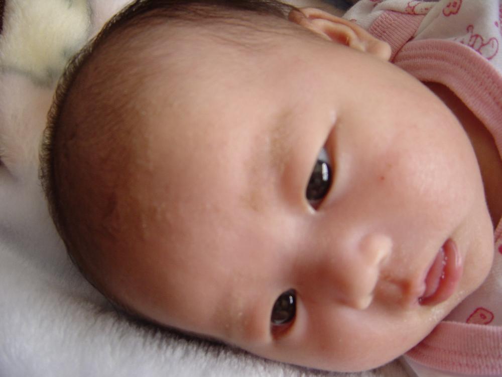 20030525-naya002.jpg
