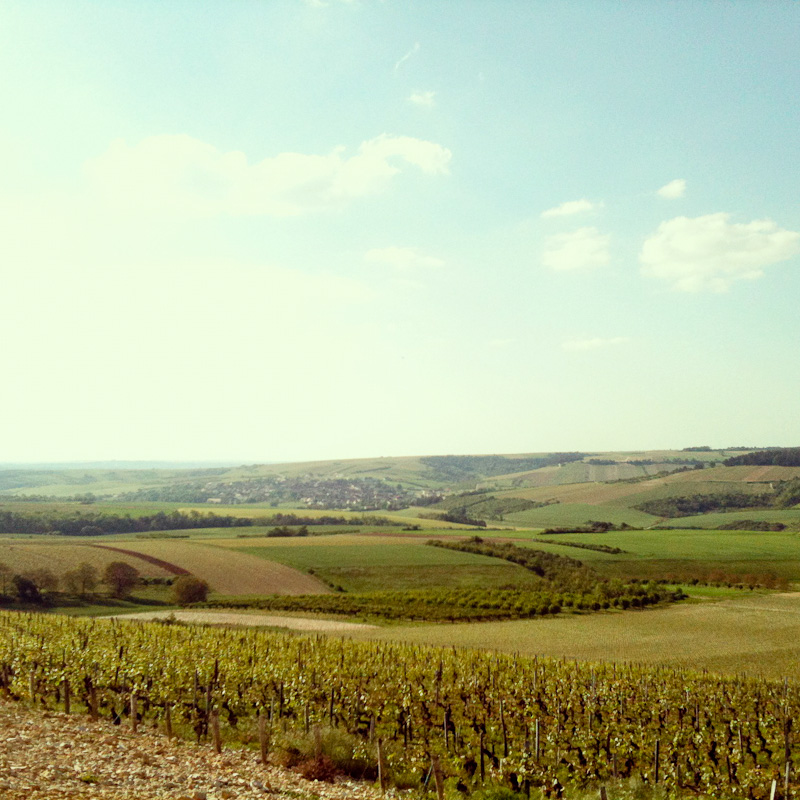 Chablis Region, France