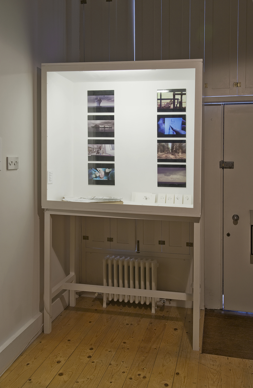 Cabinet 1 showing Hand Op De Beeck and Dryden Goodwin