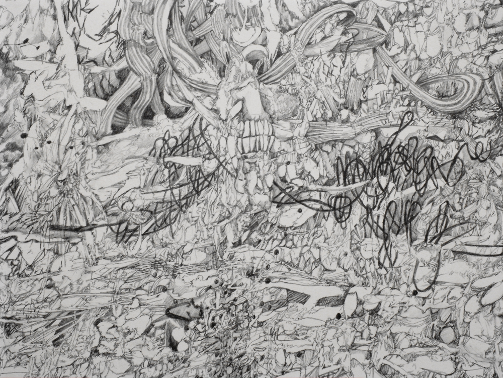 Synapse • detail • pencil on paper Click image to enlarge