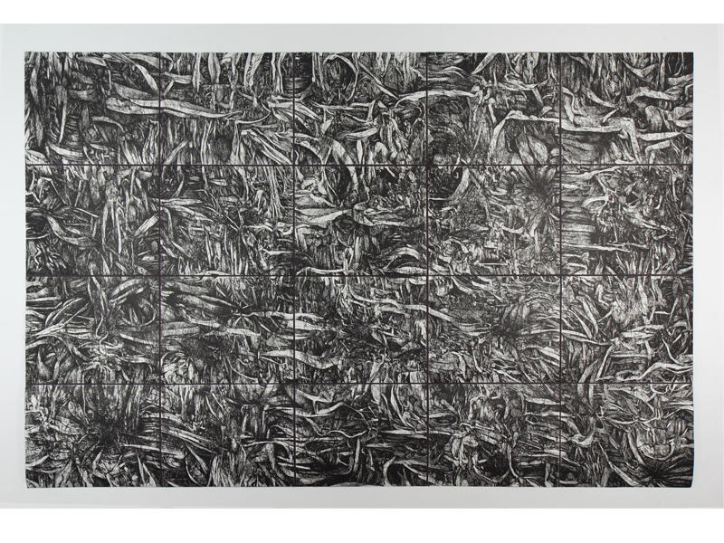 Plan #2 (Click to enlarge)    Hard/soft ground and drypoint etching on copper plates • 220cm x 147cm • 2007
