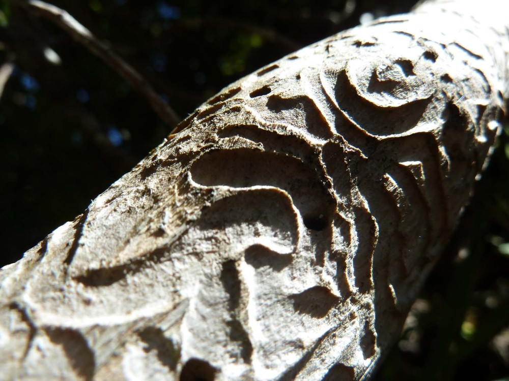 Natural Carving