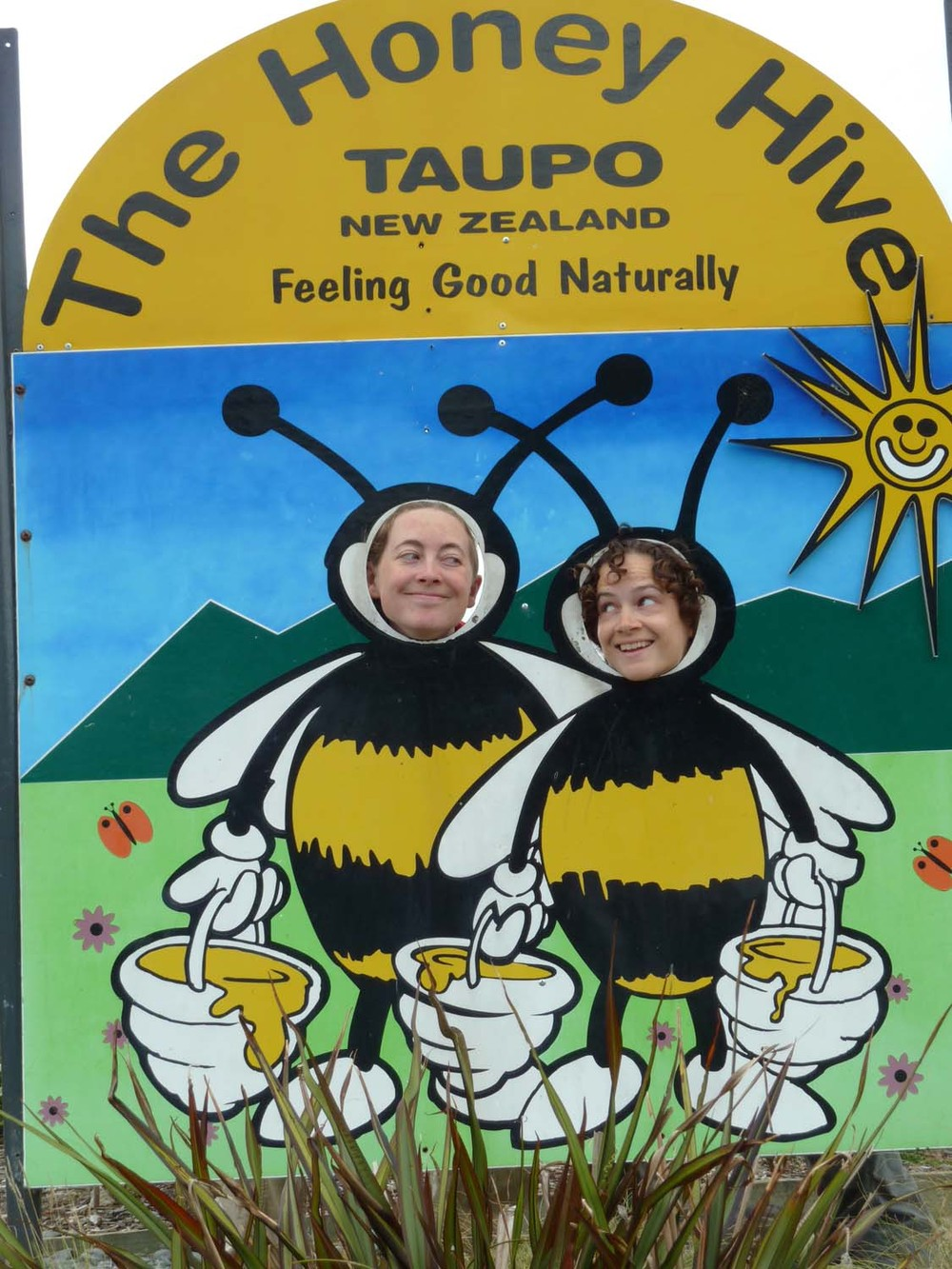 Two Sweet Bees