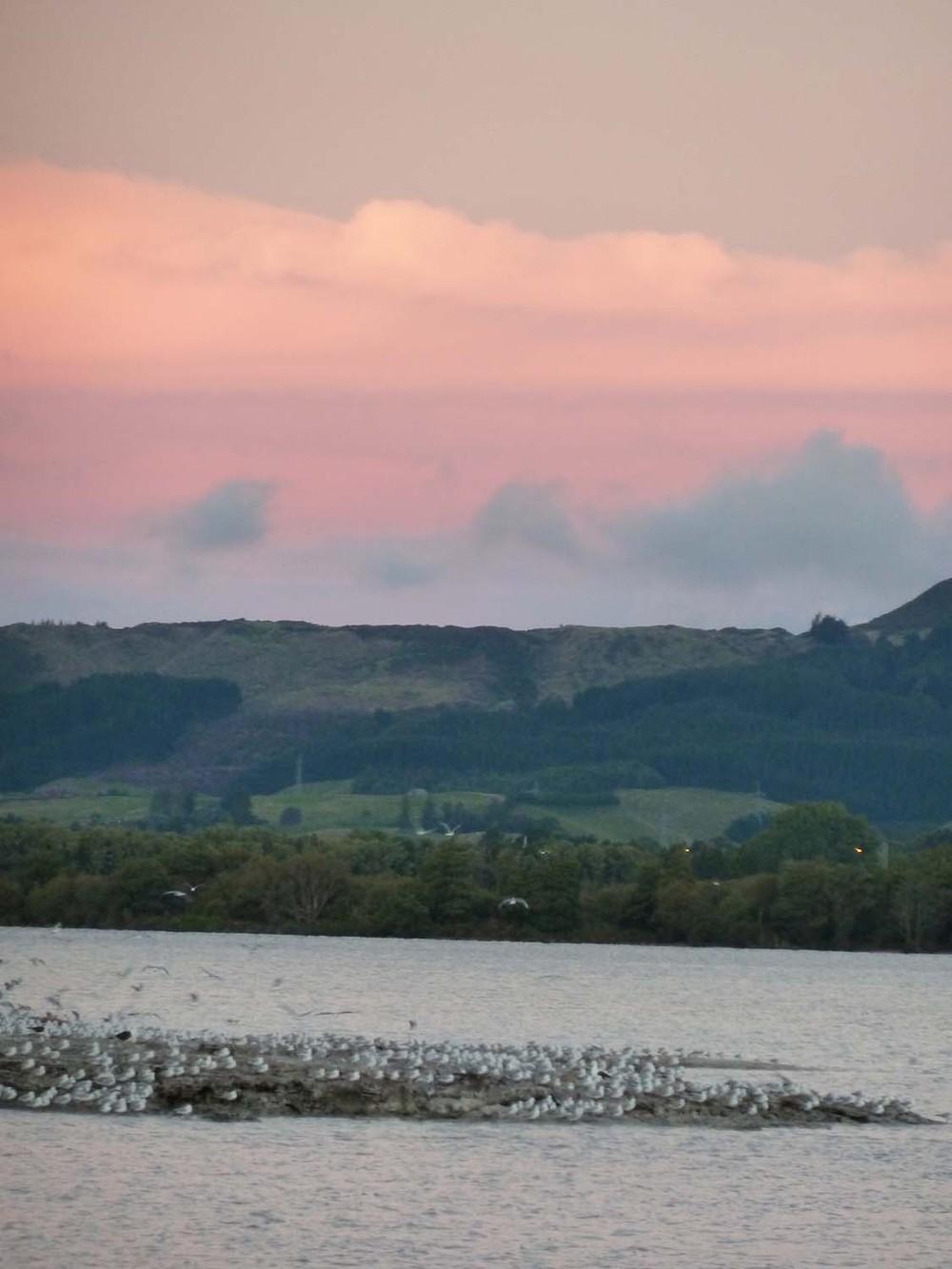 Sunset On Lake Rotorua