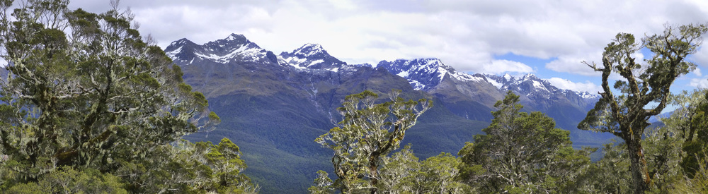 NZ_Routeburn_56.jpg