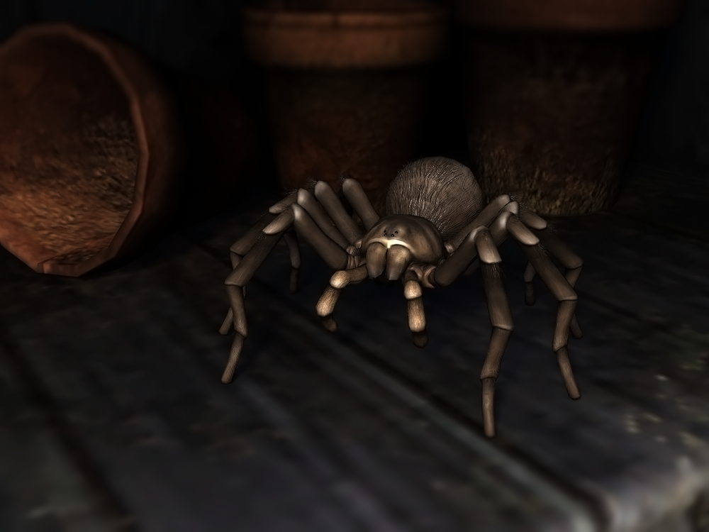 shed_tarantula.png