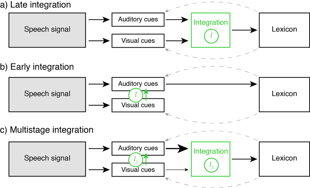 Schematic models for audiovisual speech processing, proposing a single mechanism of multisensory integration (occurring early or late in the processing stream), or multiple complementary stages.